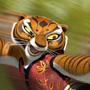 Kung Fu Panda, film d'arti marziali digitale - La grande tecnica e il realismo