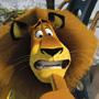 Madagascar 2: ci vuole un fisico bestiale - Cosa avete messo di voi stessi nei personaggi che interpretate?