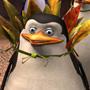 Madagascar 2, il film - Note di regia II