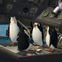 Madagascar 2, il film - Tappa conclusa, i quattro amici decollano...di nuovo II
