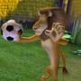 Madagascar 2, il videogioco - Alex e Marty: la partita continua