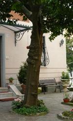 La Roma dei Cesaroni - Giardino di casa Cesaroni