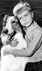 Ritrovando Lassie - Il sorpasso dei sentimenti