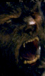 The Wolfman: attenti al lupo - Mostri