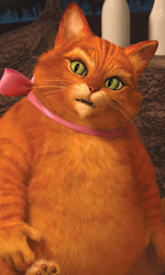 Shrek e vissero felici e contenti: la clip 'Gatto cosa ti è successo?' - Il Gatto con gli stivali