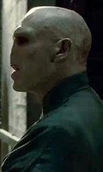 Harry Potter e i doni della morte: Hogwarts sotto attacco - Harry e Voldemort