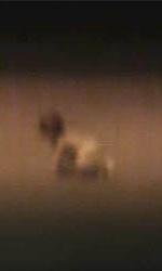Paranormal Activity 2: gli easter egg nascosti nel trailer - Il bambino da solo