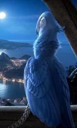 Rio, l'Avatar dei bambini - Victoria Cabello � la voce della pappagallina ''Gioiel'' nel film Rio.