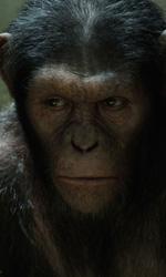 Andy Serkis, l'uomo scimmia - Cesare durante una scena del film L'alba del pianeta delle scimmie.