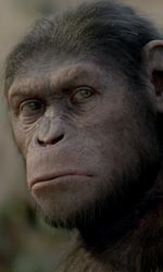 Andy Serkis, l'uomo scimmia - In foto Cesare, lo scimpanz� protagonista del film L'alba del pianeta delle scimmie di Rupert Wyatt.