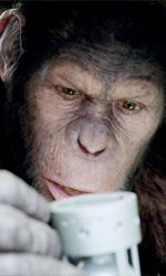 Dan Lemmon, creatore di sogni - In foto lo scimpanz� Cesare in una scena del film L'alba del pianeta delle scimmie di Rupert Wyatt.