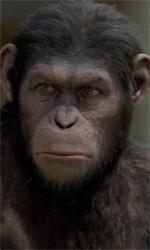 Film nelle sale: date a Cesare quel che é di Cesare - In foto lo scimpanzé Cesare, protagonista del film L'alba del pianeta delle scimmie di Rupert Wyatt.