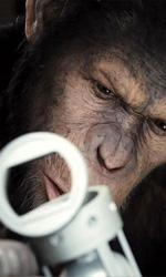 Serkis, una performance che convince e commuove - In foto lo scimpanzé Cesare, protagonista del film L'alba del pianeta delle scimmie.