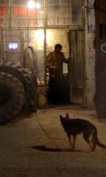 C'era una volta in Anatolia, un giallo sui generis - Una scena del film C'era una volta in Anatolia di Nuri Bilge Ceylan.
