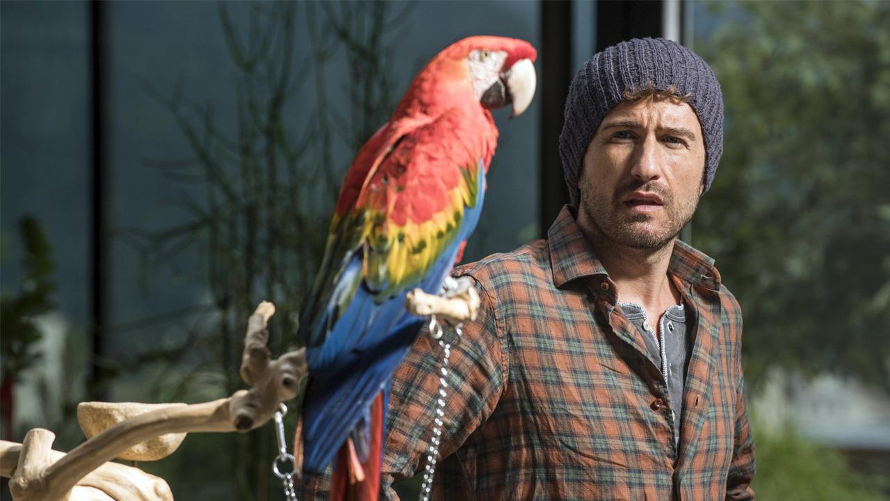 In foto Alessandro Siani (43 anni) Dall'articolo: Mister Felicità, anche il Box Office è felice.