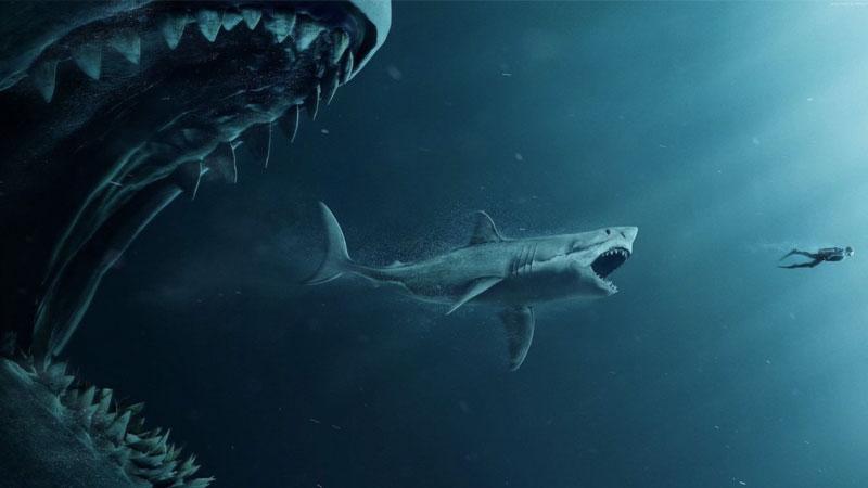 Shark - Il primo squalo, spettacolo per il grande pubblico