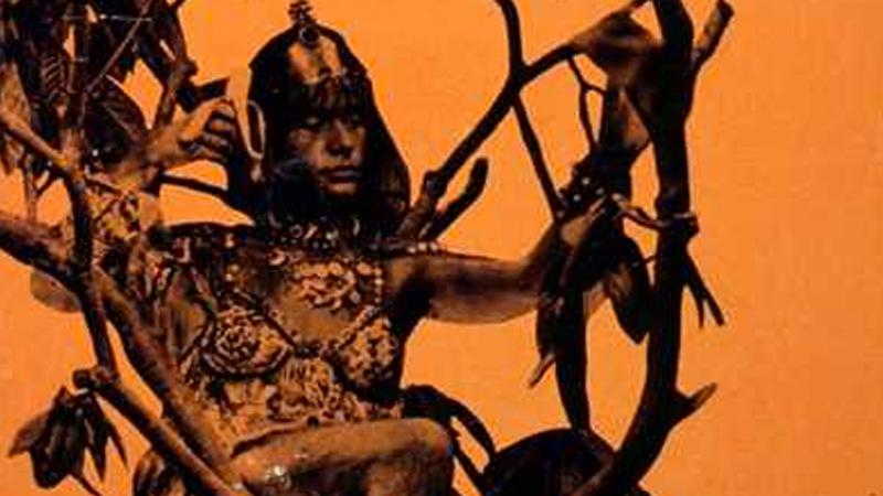 La donna scimmia