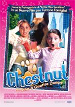 Locandina Chestnut - Un eroe a quattro zampe