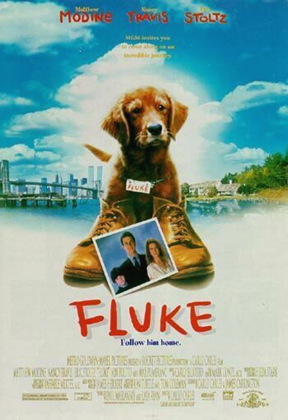 Fluke download ITA 1995 (TORRENT)