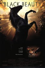 Trailer Black Beauty