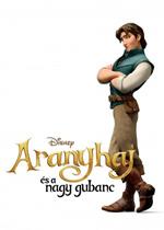 Poster Rapunzel - L'Intreccio della Torre  n. 15