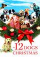 I 12 cani di Natale