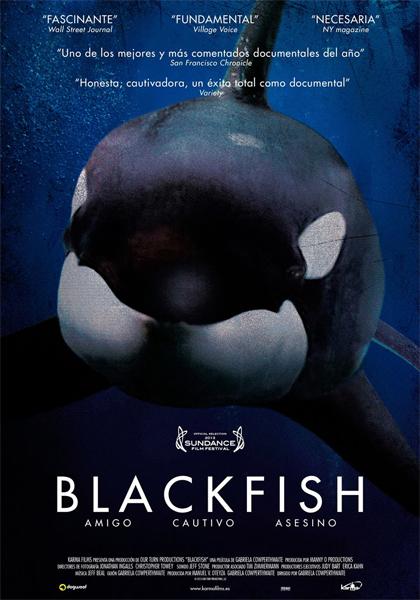 Blackfish in streaming & download