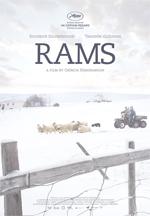 Poster Rams - Storia di due fratelli e otto pecore  n. 1