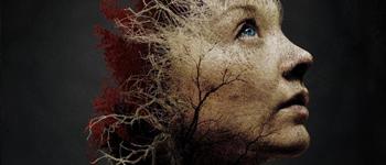Trailer Jukai - La foresta dei suicidi