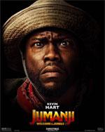 Poster Jumanji: Benvenuti nella giungla  n. 10