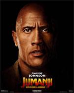 Poster Jumanji: Benvenuti nella giungla  n. 13