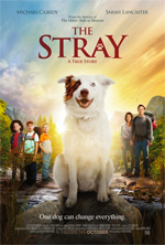 Trailer The Stray
