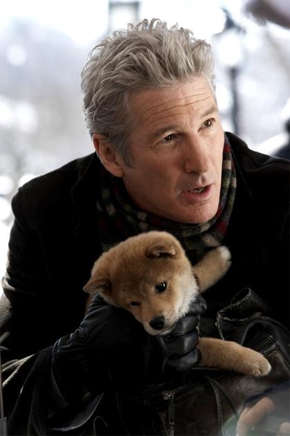 In foto Richard Gere (72 anni) Dall'articolo: Hachicko: a dog's story, l'evento fuori concorso che commuove tutti.