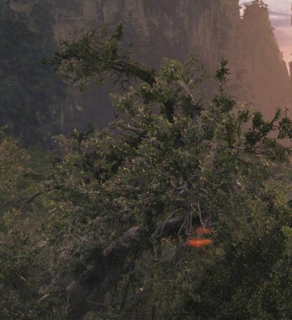 Una scena del film -  Dall'articolo: Avatar: descrizione del nuovo trailer che uscirà oggi in America.