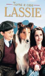 Lassie, 3 classici in dvd - Il cane più popolare del mondo