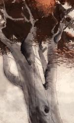 L'albero -  Dall'articolo: Fantastic Mr. Fox: i concept art di Chris Appelhans.