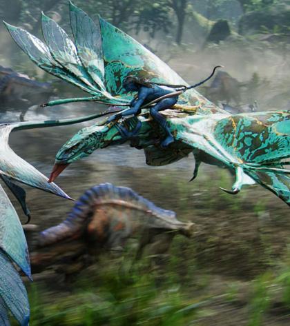 In foto Zoe Saldana (41 anni) Dall'articolo: Avatar: Special Edition, il DVD conterrà 16 minuti extra.