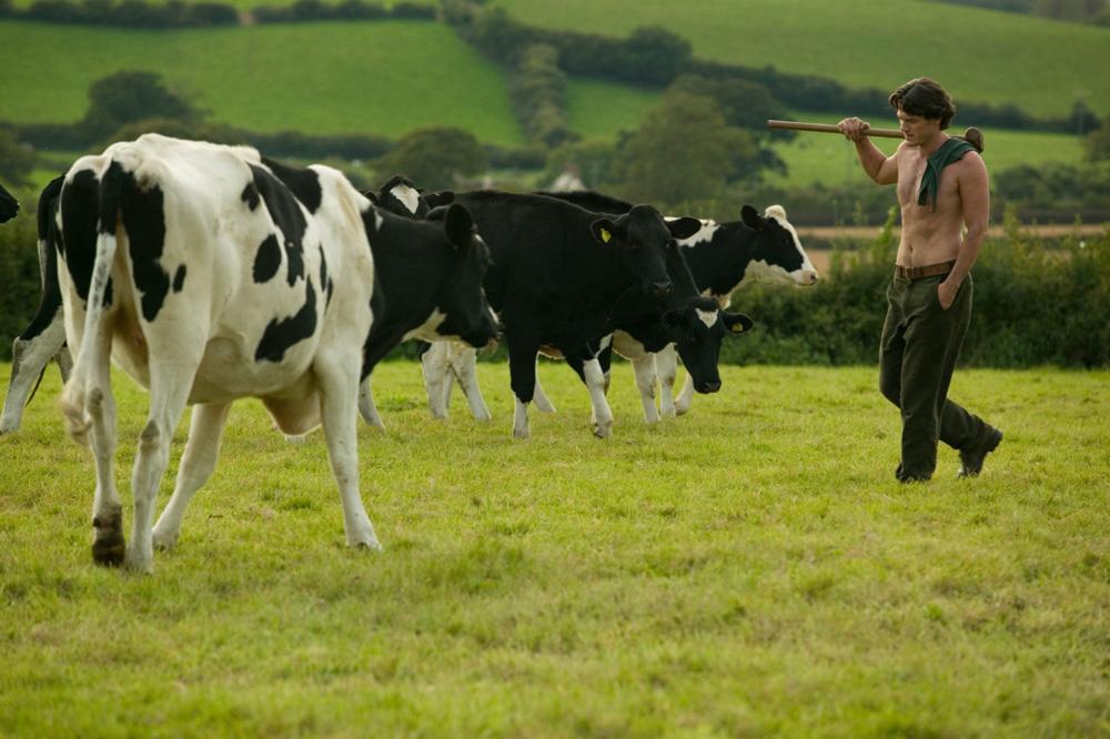 In foto Luke Evans (42 anni) Dall'articolo: La fotogallery del film Tamara Drewe - Tradimenti all'inglese.