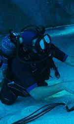 Le foto del film Sanctum 3D - Per girare Sanctum 3D Grierson ha avuto a disposizione le stesse telecamere utilizzate da James Cameron in Avatar.