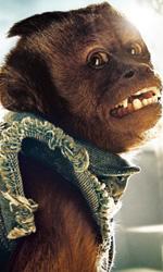 Il character poster della scimmietta Crystal. -  Dall'articolo: Una notte da leoni 2, i character poster italiani.