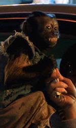 Stu, la scimmietta, Mr. Chow e Phil -  Dall'articolo: Dall'opulenta Las Vegas a Bangkok.
