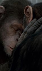 La scimmia e la Metropoli - In foto una scena del film L'alba del pianeta delle scimmie di Rupert Wyatt.