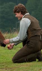 Film nelle sale: cavalli in guerra, Clooney alle Hawaii - In foto una scena del film War Horse di Steven Spielberg.