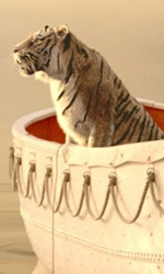 Vita di Pi, c'è anche l'arte italiana - In foto un'immagine del film Vita di Pi di Ang Lee.