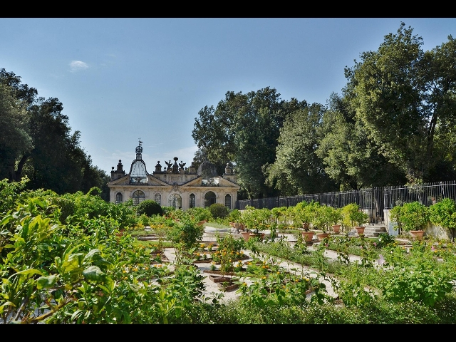 A galleria borghese giardino tramontana - Il giardino segreto streaming ...