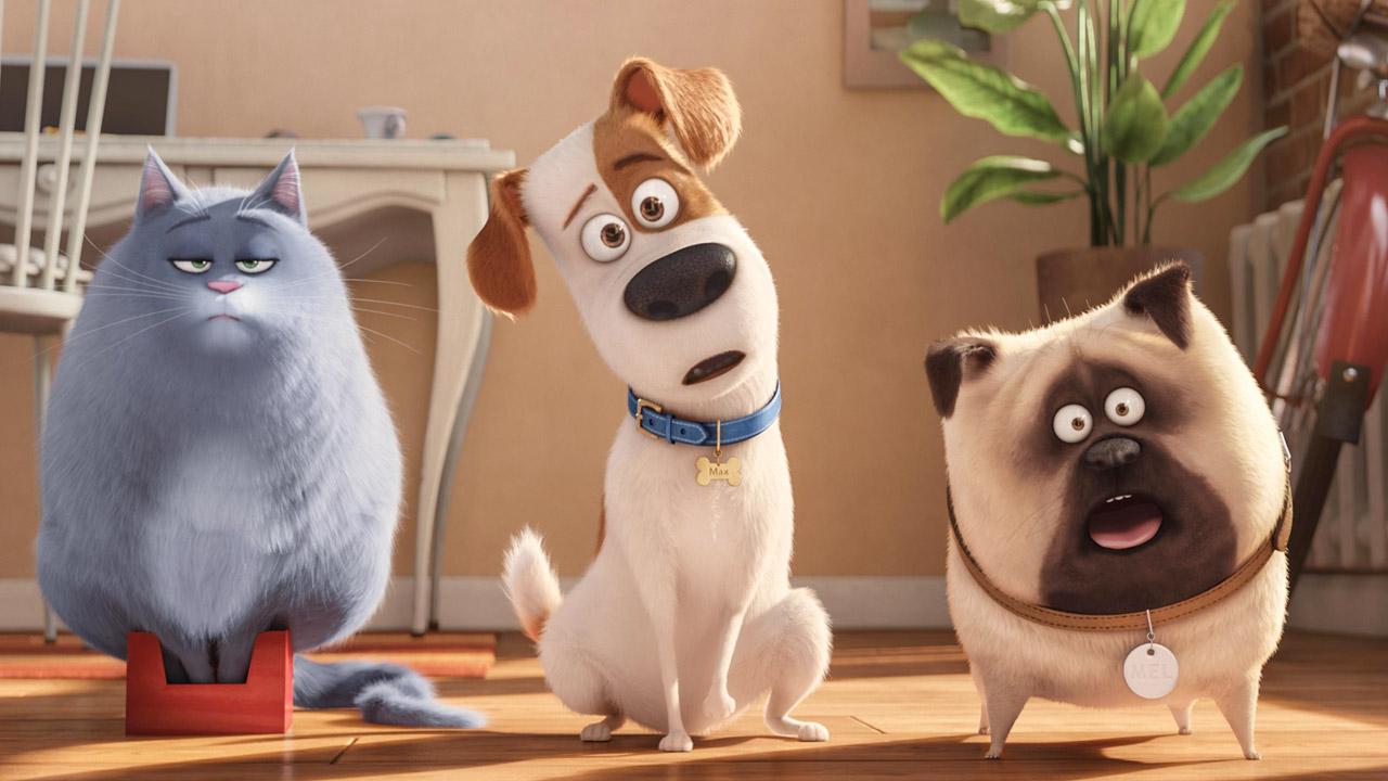 In foto Louis C.K. (42 anni) Dall'articolo: Box Office USA, $ 11.000.000 al giorno per Pets, il film dei record.