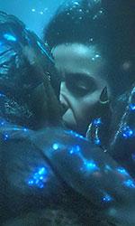 In foto Sally Hawkins (43 anni) Dall'articolo: La forma dell'acqua vola a 6 milioni al box office.