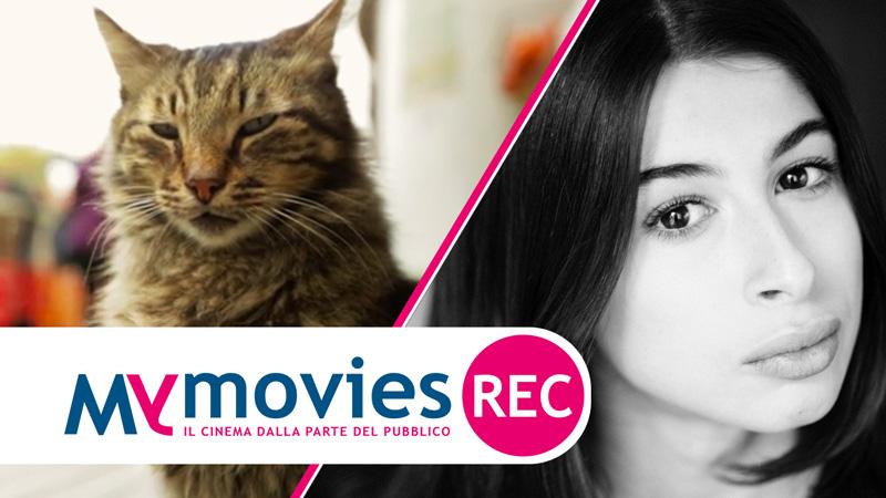 Kedi - La citta dei gatti, la video recensione