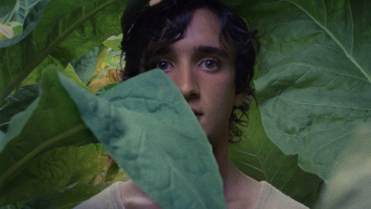 fonte: https://www.mymovies.it/film/2018/lazzaro-felice/