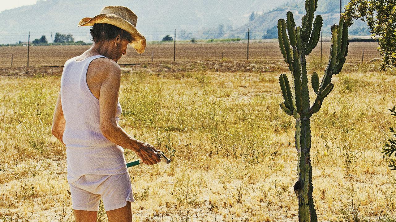 In foto Harry Dean Stanton Dall'articolo: Lucky, un omaggio appassionato all'America del vecchio Far West..